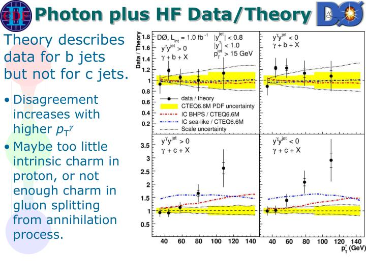 Photon plus HF Data/Theory