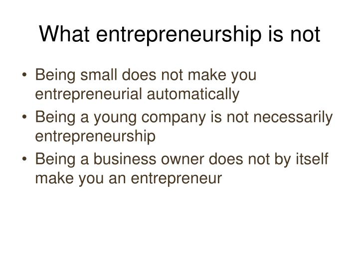 What entrepreneurship is not