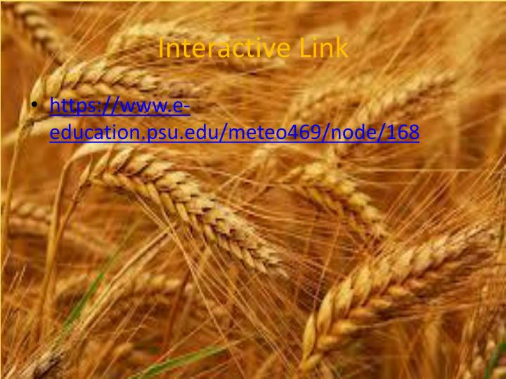 Interactive Link