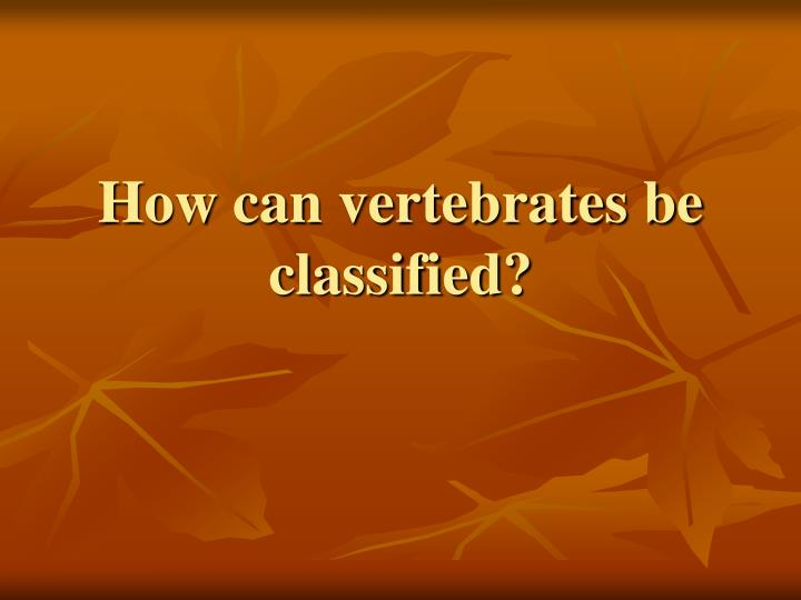 How can vertebrates be classified?