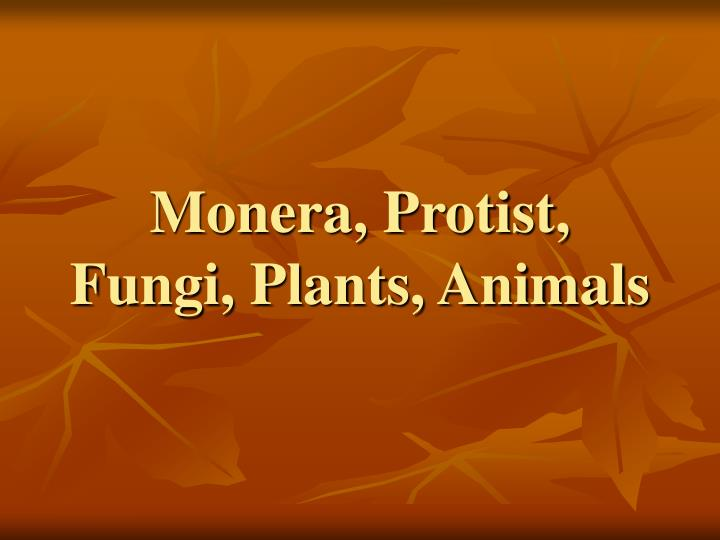 Monera, Protist, Fungi, Plants, Animals