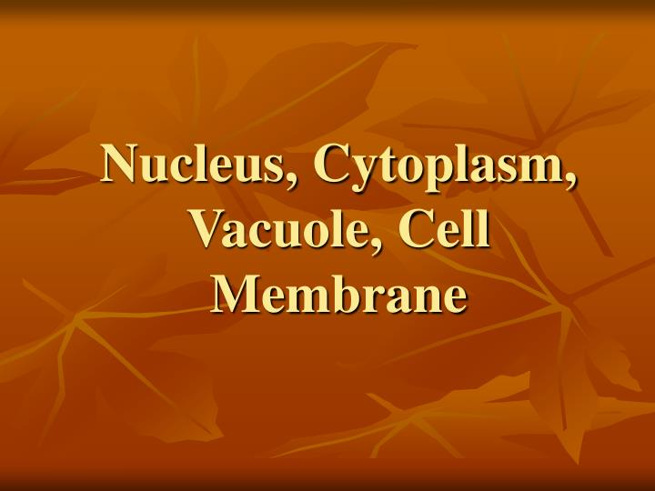 Nucleus, Cytoplasm, Vacuole, Cell Membrane