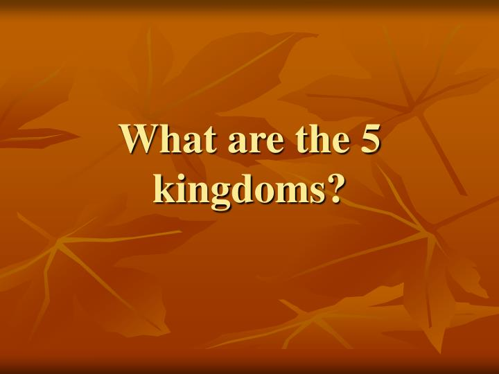 What are the 5 kingdoms?