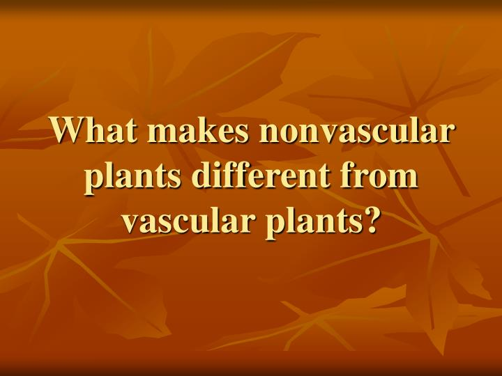 What makes nonvascular plants different from vascular plants?