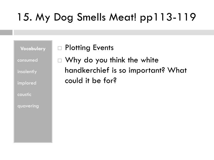 15. My Dog Smells Meat! pp113-119
