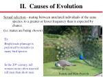 ii causes of evolution1