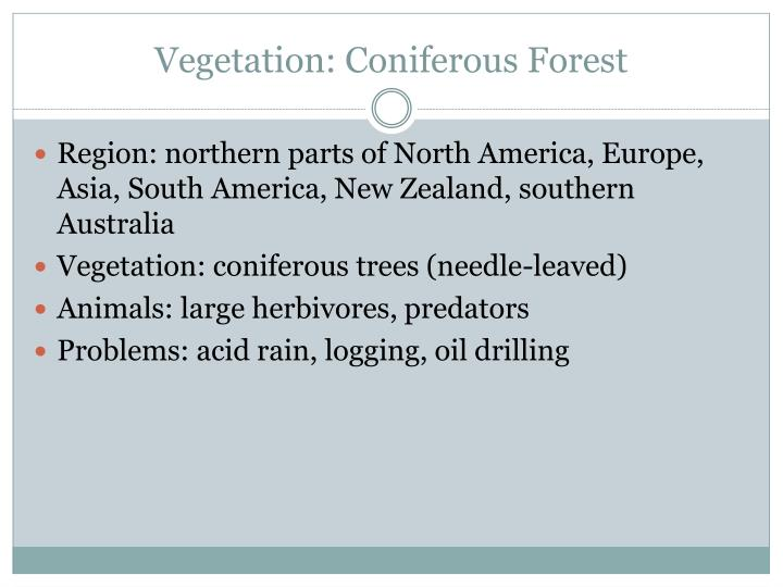 Vegetation: Coniferous Forest