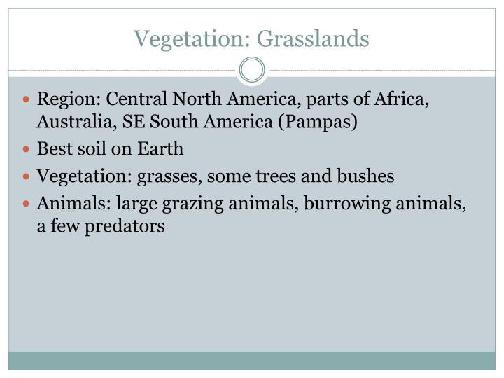 Vegetation: Grasslands