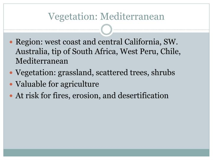 Vegetation: Mediterranean