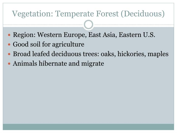 Vegetation: Temperate Forest (Deciduous)