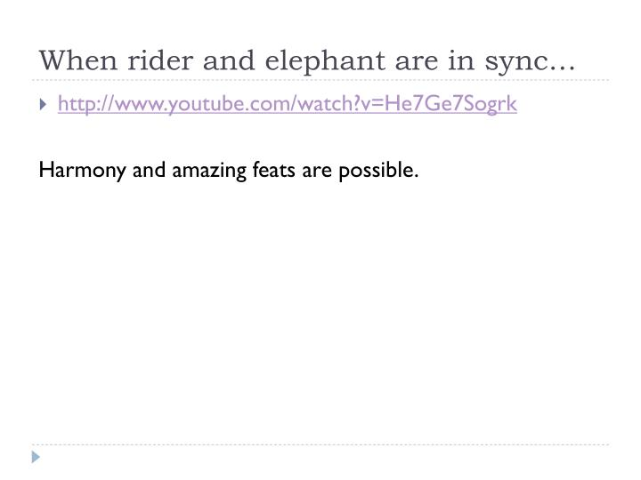 When rider and elephant are in sync…