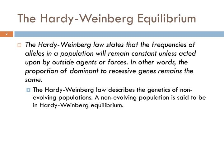 The hardy weinberg equilibrium