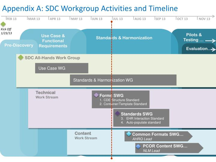 Appendix A: SDC Workgroup Activities and Timeline
