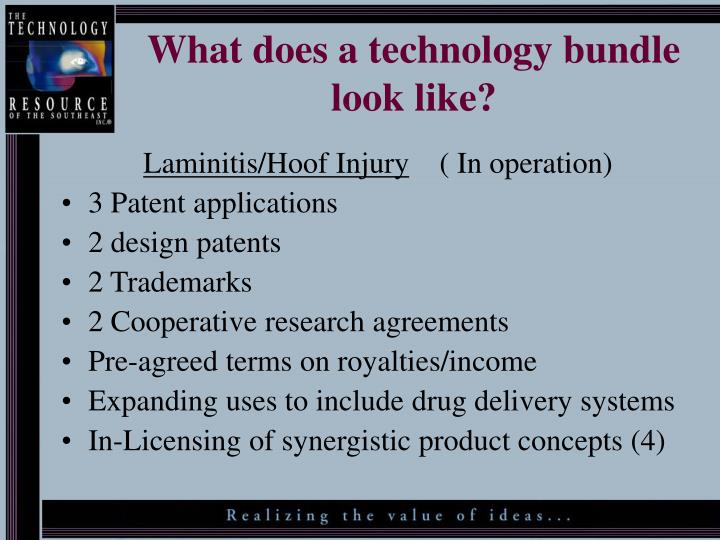 What does a technology bundle look like?