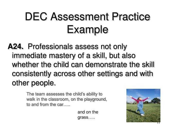 DEC Assessment Practice Example