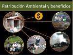 retribuci n ambiental y beneficios