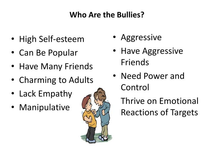 Who Are the Bullies?