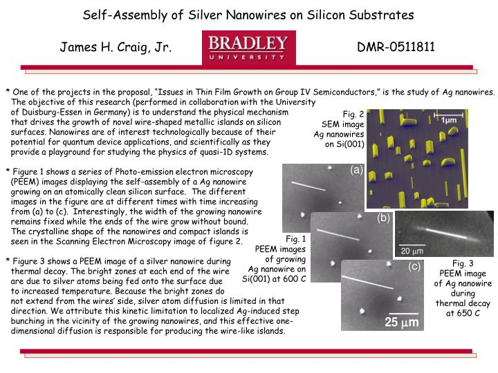 Self-Assembly of Silver Nanowires on Silicon Substrates