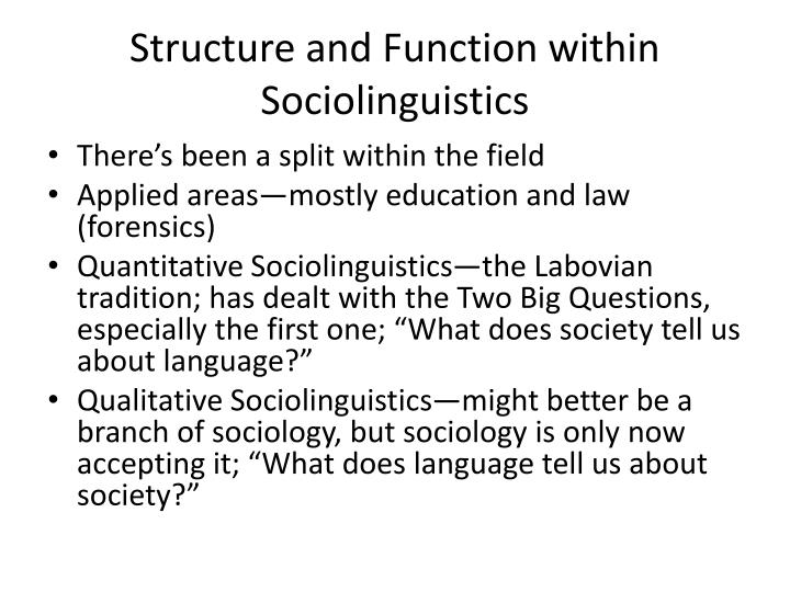 Structure and Function within Sociolinguistics