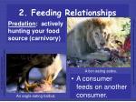 2 feeding relationships