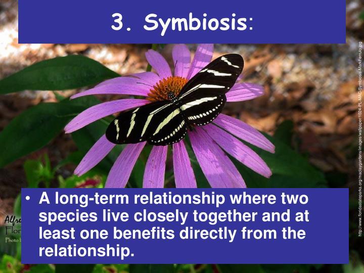 3. Symbiosis