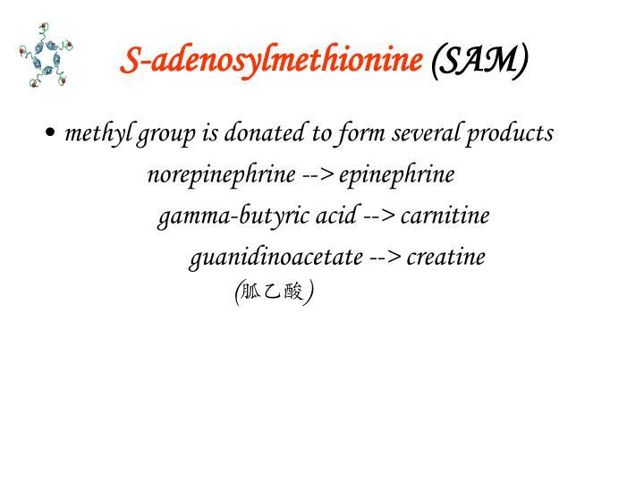 S-adenosylmethionine