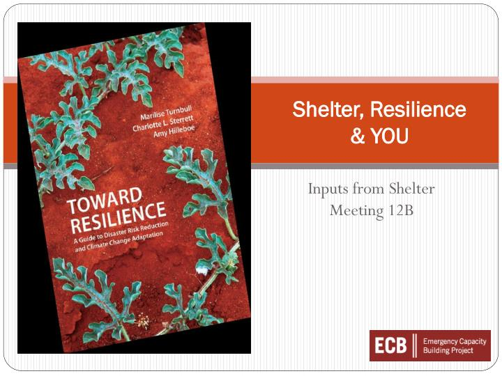 Shelter resilience you
