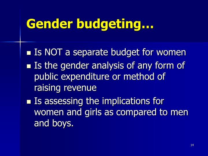 Gender budgeting…