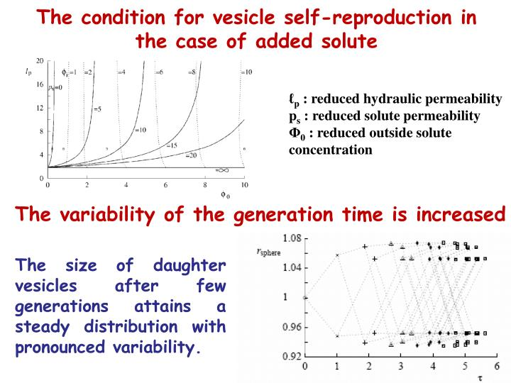 The condition for vesicle self-reproduction in the case of added solute