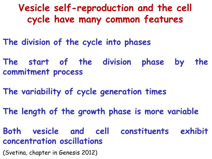Vesicle self-reproduction