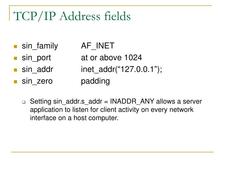 TCP/IP Address fields