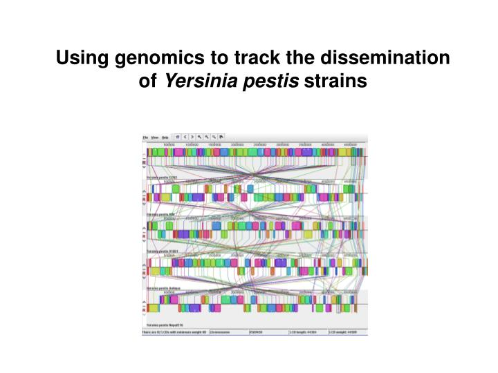 Using genomics to track the dissemination of