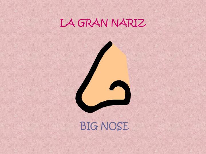 LA GRAN NARIZ