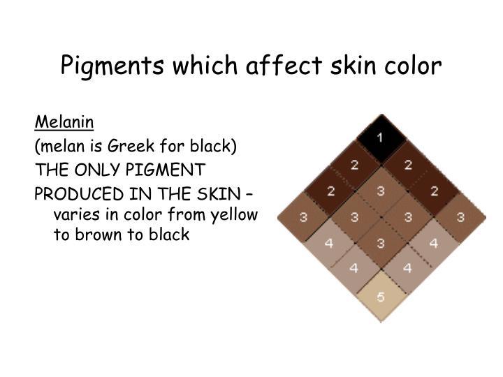 pigments in skin #11