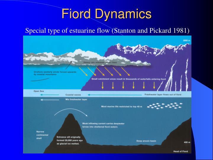 Fiord Dynamics