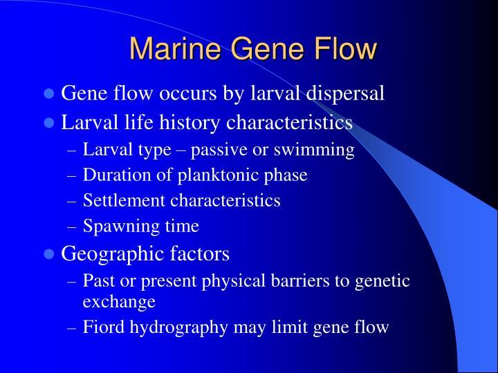 Marine Gene Flow