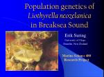 population genetics of liothyrella neozelanica in breaksea sound
