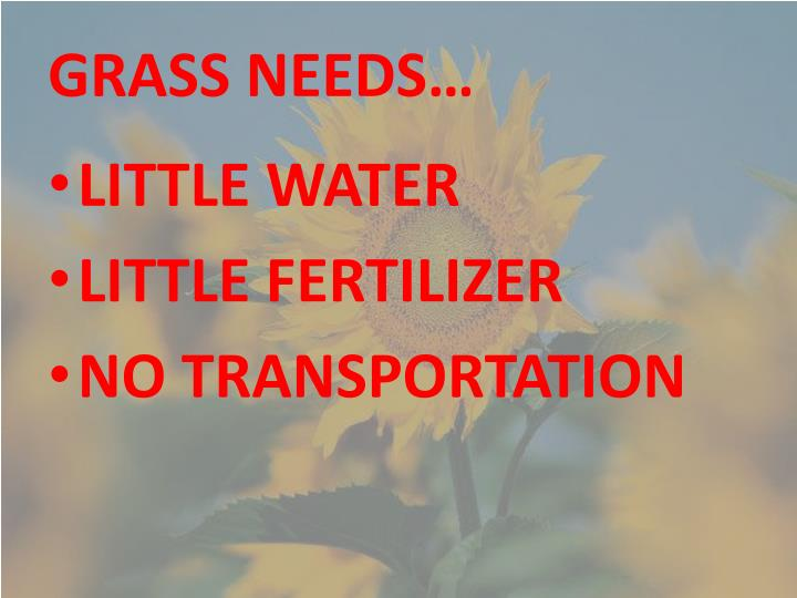 GRASS NEEDS…