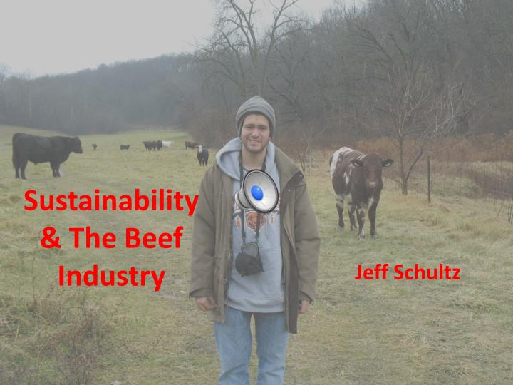 Sustainability the beef industry