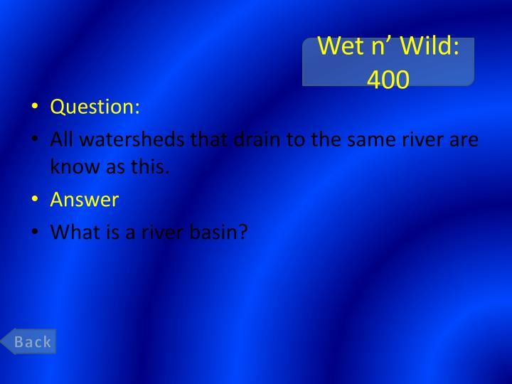 Wet n'