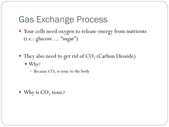 Gas Exchange Process