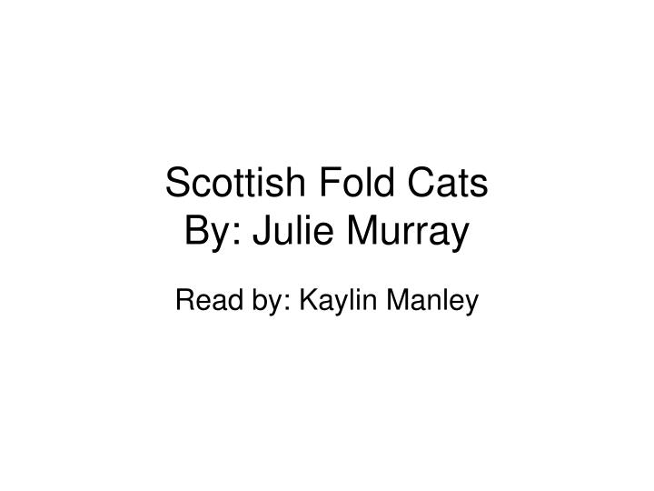 scottish fold cats by julie murray