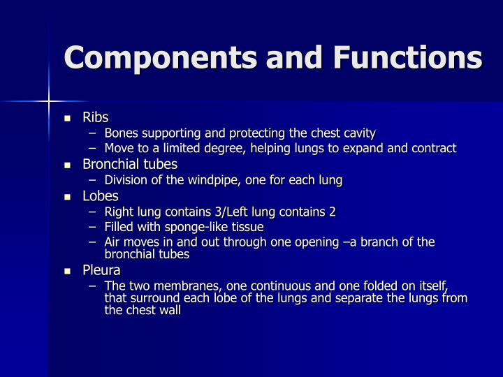 Components and Functions