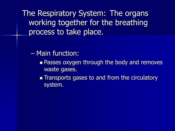 The Respiratory System:	The organs working together for the breathing process to take place.