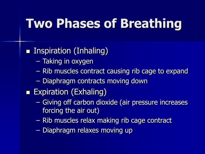 Two Phases of Breathing