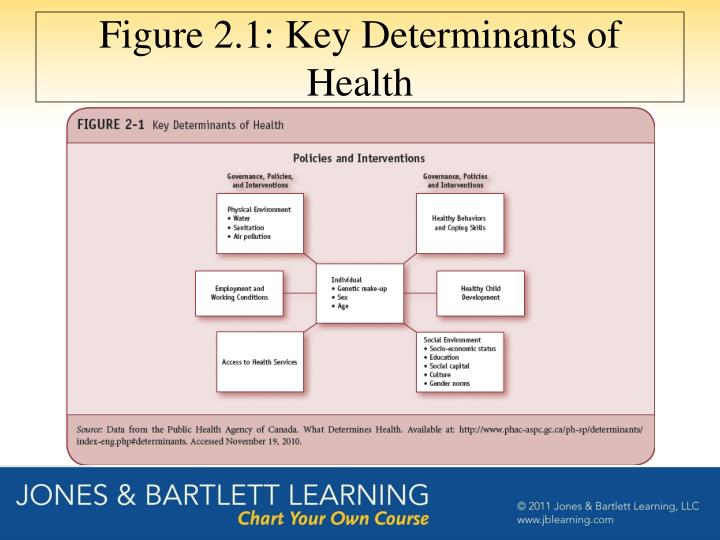 Figure 2.1: Key Determinants of Health