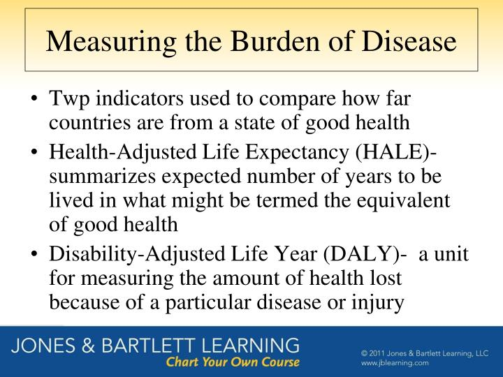 Measuring the Burden of Disease