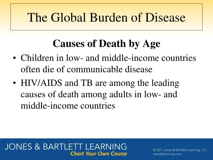 The Global Burden of Disease