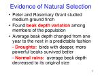 evidence of natural selection3