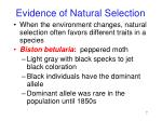 evidence of natural selection5